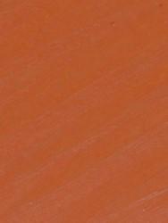 121723 Orange IR