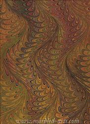 Marbled Autumn Waved Icarus
