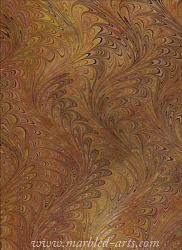 Marbled Copper Waved Icarus