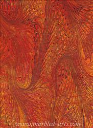 Marbled Fire Dragon Wings