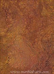 Marbled Ochre Waved Icarus
