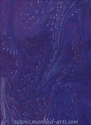 Marbled Purple Dragon Wings