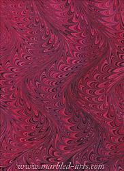 Marbled Red Waved Icarus